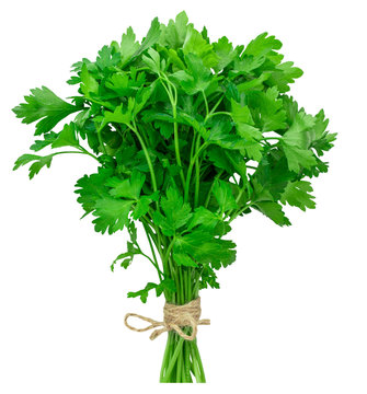 bunch fresh parsley isolated on white background