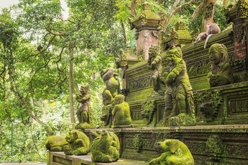 In de dag Aap Monkey Forest - a sacred and popular tourist spot, Ubud, Kabupaten Gianyar, Bali, Indonesia