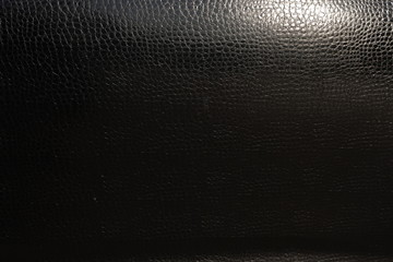 Detailed skin of a reptile. The body of the car under the film of snake skin. Wall mural