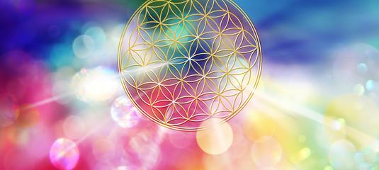 Blume des Lebens entsendet aus kosmischer Tiefe ein buntes Spektrum strahlenden Lichts