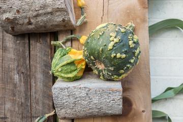Various pumpkins as a decoration in autumn