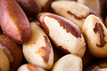 Close up picture of Brazil nuts, shallow depth of field.