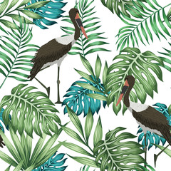 Exotic bird tropical jungle seamless white background