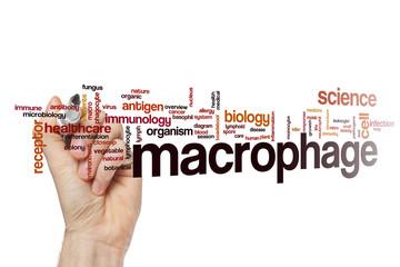 Macrophage word cloud