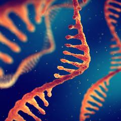 Single strand ribonucleic acid, RNA and molecular biology research