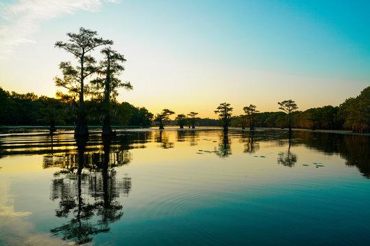 View at dusk at Caddo Lake near Uncertain, Texas
