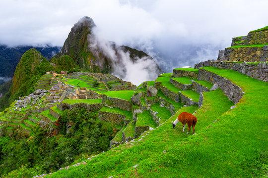 Machu Picchu, Cusco,Peru: Overview of the lost inca city Machu Picchu with Wayna Picchu peak