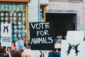 """ Vote for animals "" banner at Animal Right Protest. No to animal testing. Cruelty free. March for animal. Rally"