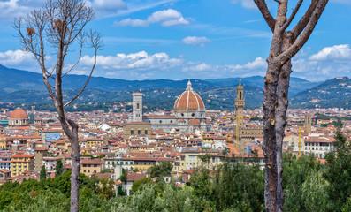 Fototapeta premium Florencja Firenze