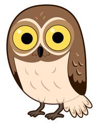 Wall Murals Owls cartoon Animal Desert Elf Owl Illustration