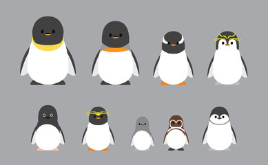 Cute Characters Chubby Penguin Various Breeds Cartoon Vector Illustration