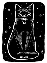 Vintage style vector illustration. Angry black cat on a starry night background. Hand drawn graphic picture. Digital sketches of animals. Design for poster, print, postcard, t-shirt etc.