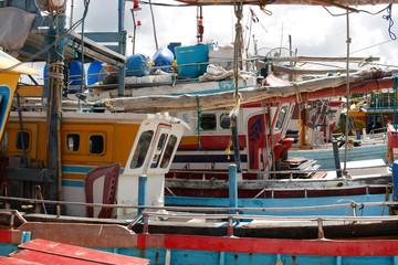 Fischerboote und Fisch im Hafen von Negombo, Sri Lanka