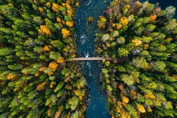Aerial view of fast river flow through the rocks and colorful forest. Autumn in Finland Fototapete