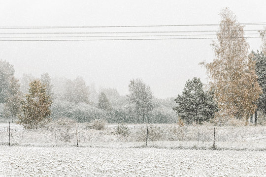 Heavy snowfall in Northern Europe countryside. White snow blizzard in rural landscape