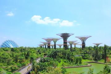 シンガポールの植物園から望む風景