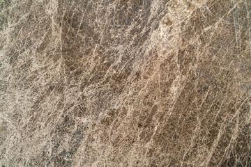 orange beige natural marble texture background