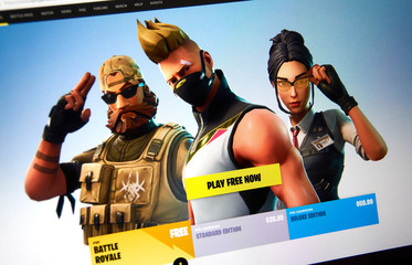 Fortnite video game official site.