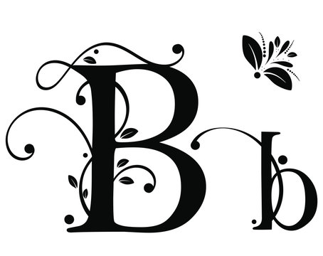 Decorated Alphabet with ornaments vintage vector, Letter B upper and lower case with leaves vector. Decoration vintage for invites card and other concept ideas. Illustration alphabet