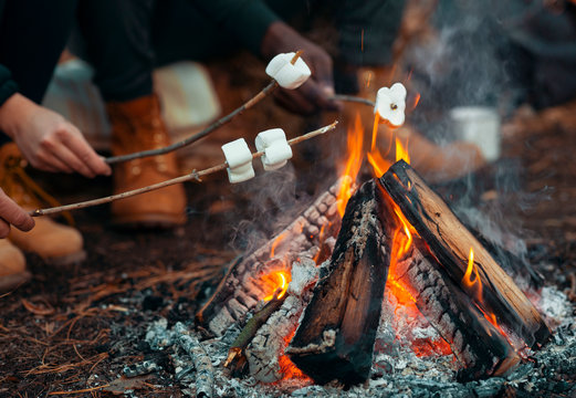 Close up of people frying marshmallow in forest