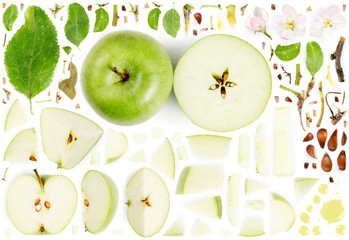 Apple Collection Abstract