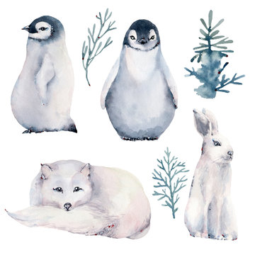 watercolor illustration with polar animals.