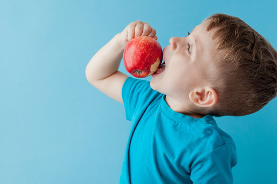 Baby child holding and eating red apple on blue background, food, diet and healthy eating concept