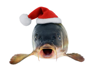 Santa Claus red hat in christmas fish carp