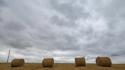Fototapete - Yellow haystacks in the field wheat and cloudy sky. Beautiful scenic dynamic landscape agricultural land, 4K time lapse. Beauty nature, agriculture, harvest.