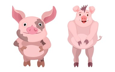 cartoon flat characters. pink bright pigs