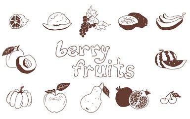 doodles fruit large selection on white background