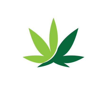 cannabis leaf logo. marijuana health medical logo design template vector icon illustration