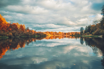 Picturesque autumn forest by the river.
