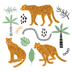 Set with leopard and tropical leaves. Vector illustration, for printing on t-shirts, postcards, pictures, fabric, tableware, packaging paper. Cute children background.