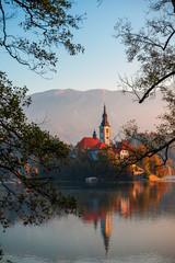 Insel Bled im Bleder See, Slowenien
