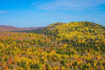 Panoramic View of the Autumn colors of Oberg Mountain