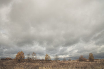 Aluminium Prints Dark grey Autumn cloudy weather. Field. A lot of clouds. yellow colors