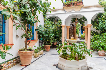 Courtyard of a traditional house in Cordoba, Spain