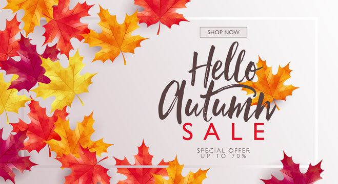 Autumn sale discount marketing design layout. Hello autumn banner concept. Maple theme design with frame on white gradient background. Vector illustration template.