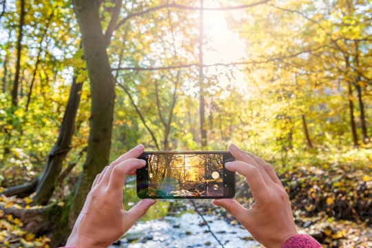 Capturing beauty of nature