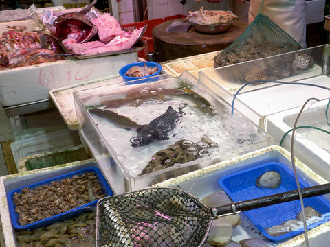 live seafood for sale at fa yuen market in hong kong