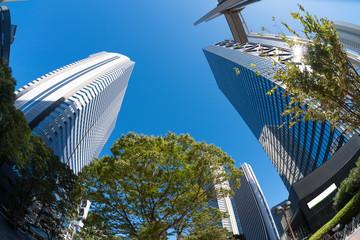 新宿高層ビル街 青空