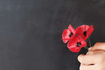 Zelfklevend Fotobehang Klaprozen Hand holding red poppy flowers, remembrance day, Veterans day, lest we forget concept