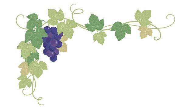 ブドウの葉の飾り枠