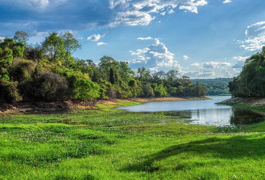 crocodile lake in Ankarafantsika national park, rainforest with tropical climate, Madagascar wilderness