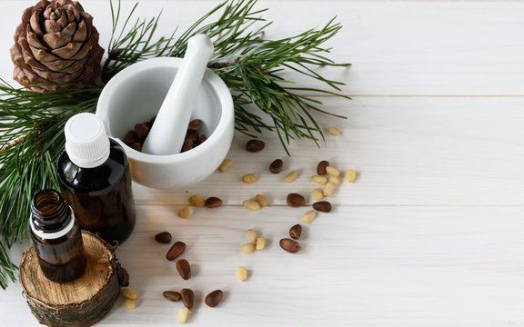 Cedar oil, branches and cedar cone on white. Copy space. Beauty and healthy concept.Energizing facial seed serums.