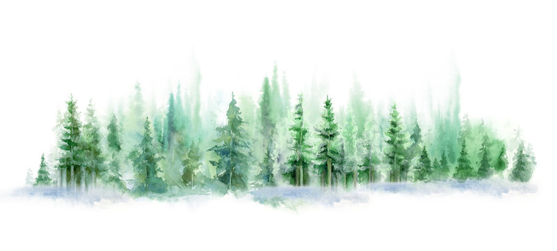 Green landscape of foggy forest, winter hill. Wild nature, frozen, misty, taiga. watercolor background