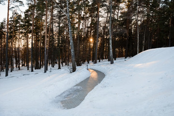 The steps on the lawn go down through the forest to the river at sunset on a winter day