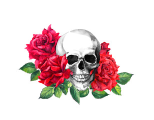 Human skull, red rose flowers. Watercolor painting for Halloween