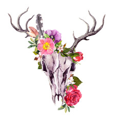 Deer animal skull with flowers, feathers. Watercolor